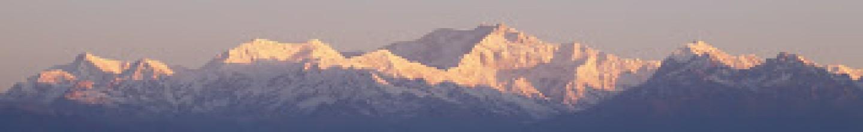 Ashodara